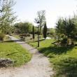 Pradanos de Ojeda jardines 1